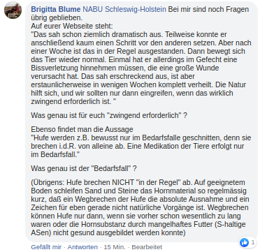 Auswahl_054.png