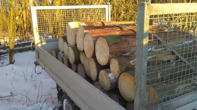 Fichtebrennholz (2).jpg